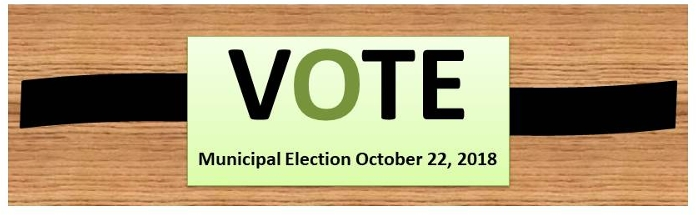 View our Voter Information page